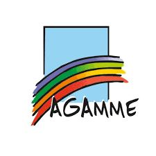 AGAMME remite aos grupos parlamentarios no Congreso dos Deputados os seus comentarios sobre as enmendas á LOPIVI